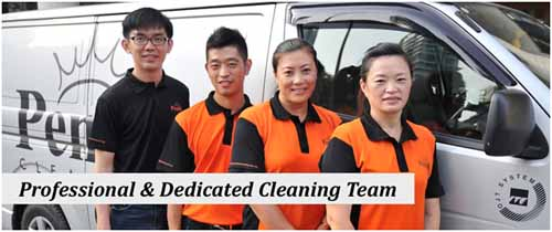 Have a professional and dedicated cleaning team at your service