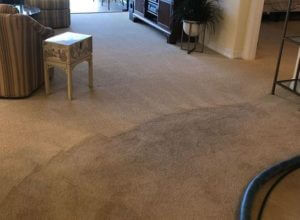 carpet cleaning images from Peniel Cleaning